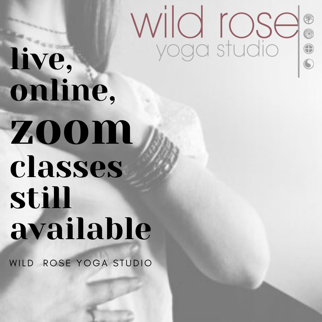 https://www.wildroseyoga.org/wp-content/uploads/2020/06/live-online-zoom-classes-still-available-1.png
