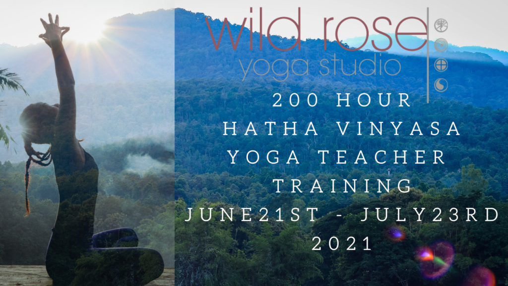 yoga teacher training live online and in chiang mai