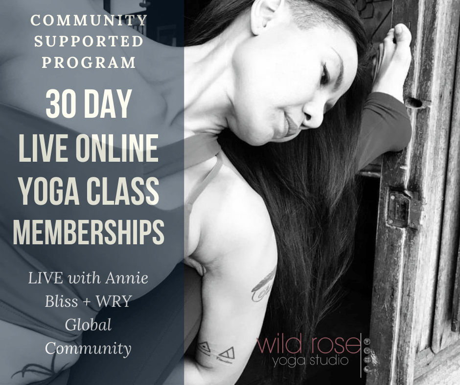 Live Online Yoga Class Memberships
